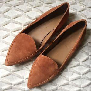 Everlane Modern Point Flat Shoe